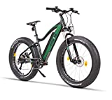 Fitifito FT26 Elektrofahrrad Fatbike E-Bike Pedelec, 48V 250W Bafang Cassette...