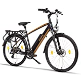 Fitifito CT28M, 28 Zoll Elektrofahrrad Citybike E-Bike Pedelec, 48V 250W...