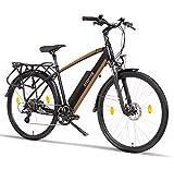 Fitifito CT28M, 28 Zoll Elektrofahrrad Citybike E-Bike Pedelec, 48V 250W SY...